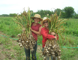 Emma and Nicole with a harvest.
