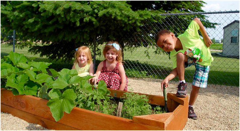 Farm To Early Care And Education Community Groundworks